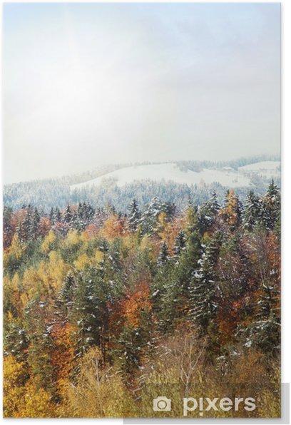 Plakat Zimowa scena - Drzewa
