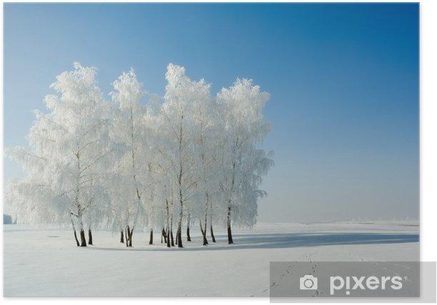 Plakat Zimowy dzień zimno, piękne szron i rym na drzewach. - Tematy