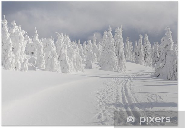 Plakat Zimowy krajobraz - Style