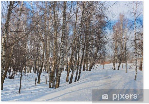 Plakat Zimowy las - Pory roku