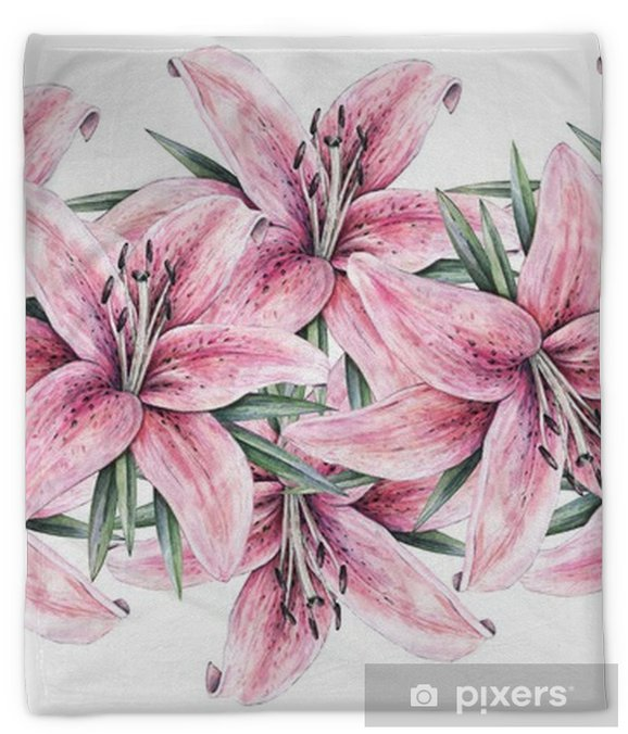 Pink Lily Flowers Isolated On White Background Watercolor Handwork Illustration Drawing Of Blooming Lily With Green Leaves Seamless Pattern Frame Border With Lilies For Design Plush Blanket Pixers We Live