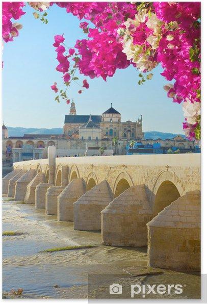 Poster Alte Kathedrale und römische Brücke, Cordoba - Europa