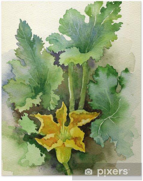 Poster Aquarell Flora Collection: Zucchini-Blume - Kunst und Gestaltung