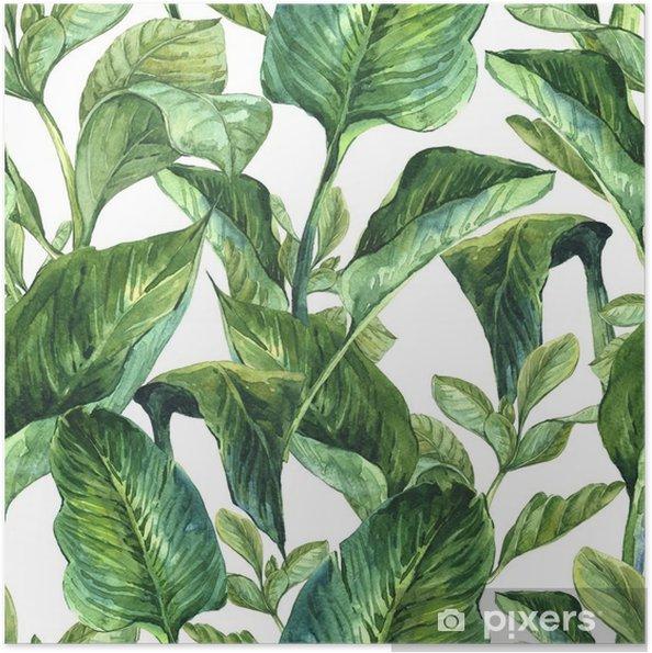 Poster Autoadesivo Acquerello sfondo trasparente con foglie tropicali - Piante & Fiori