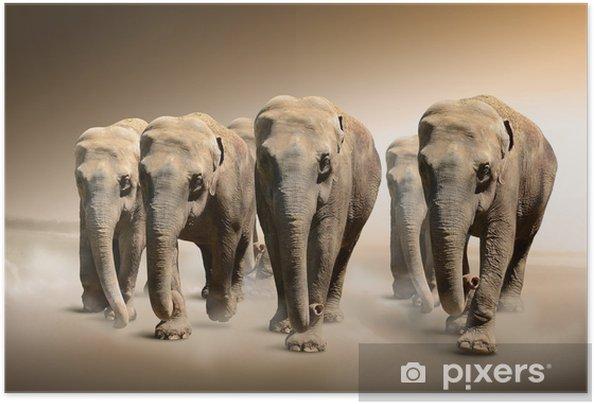 Poster Autoadesivo Branco di elefanti - Temi