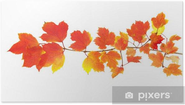 Poster Autumn leaves - Jahreszeiten