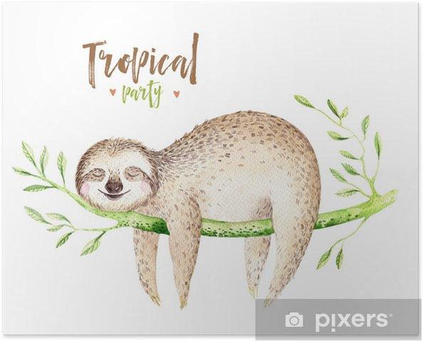Poster Baby Tiere Faultier Kinderzimmer Isoliert Malerei Aquarell