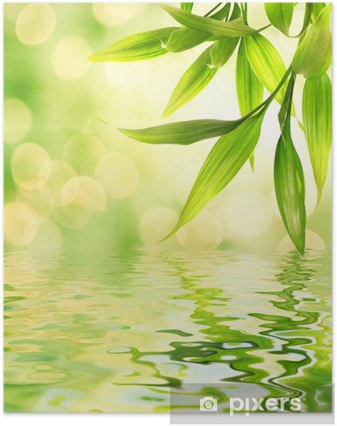Poster Bambus-Blätter in gerenderten Wasser reflektiert - Themen