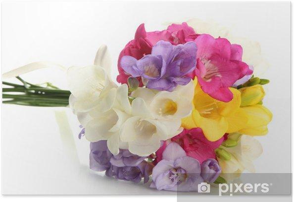 Poster Beautiful Bouquet von Freesien, isoliert auf weiß - Blumen