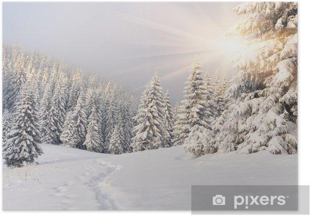 Poster Bellissimo paesaggio invernale in montagna. Alba -