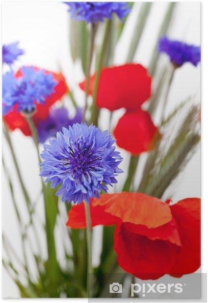 Poster Blumenstrauss aus Kornblumen und Klatschmohn - Kornblumen