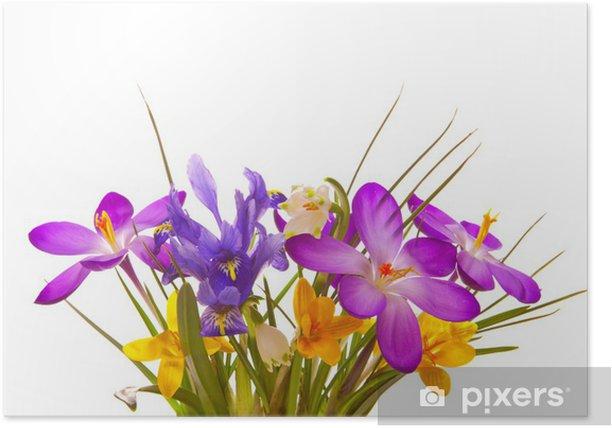 Poster Blumenstrauss - Feste