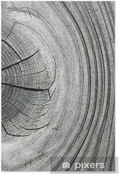 Poster Brett mit Ast - Texture