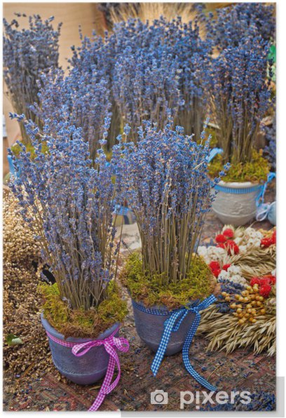 Poster Bunch of lavender flowers on a wood table - Blumen