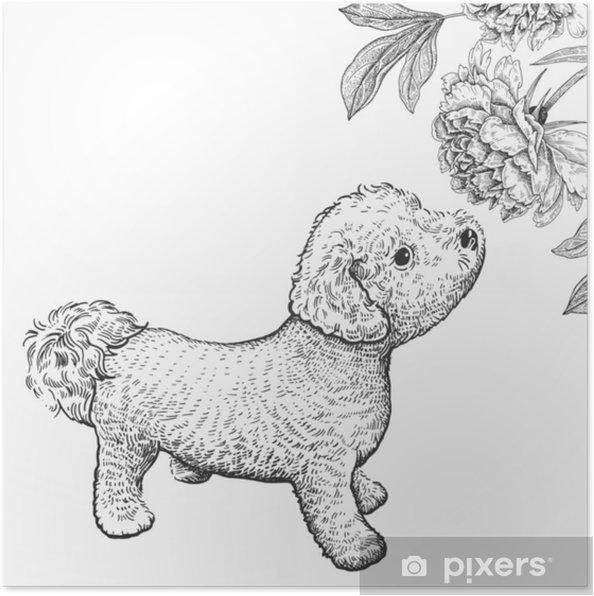 Disegno Cane Bianco E Nero.Poster Cane Bishon Cucciolo Carino Fiutando Fiori Di Peonia