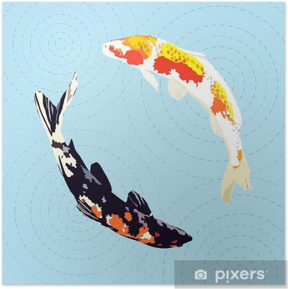Poster Carpa cinese, pesce koi giapponese, illustrazione vettoriale - Animali