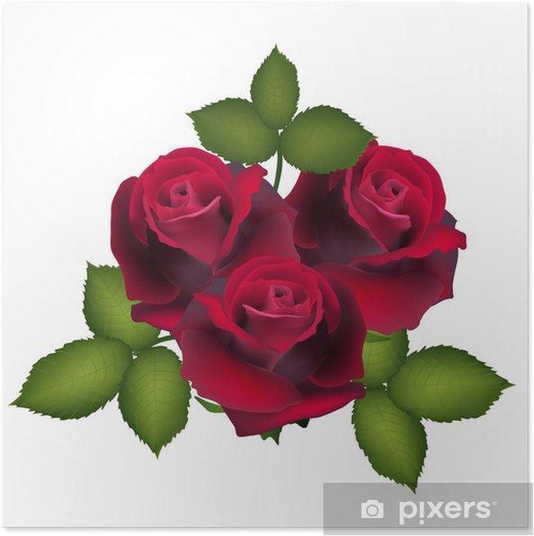 Poster Cartolina Da Rose Rosse Fiore Immagine Vettoriale Per Il