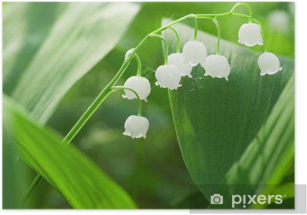 Poster Charming Lilie - Natur und Wildnis