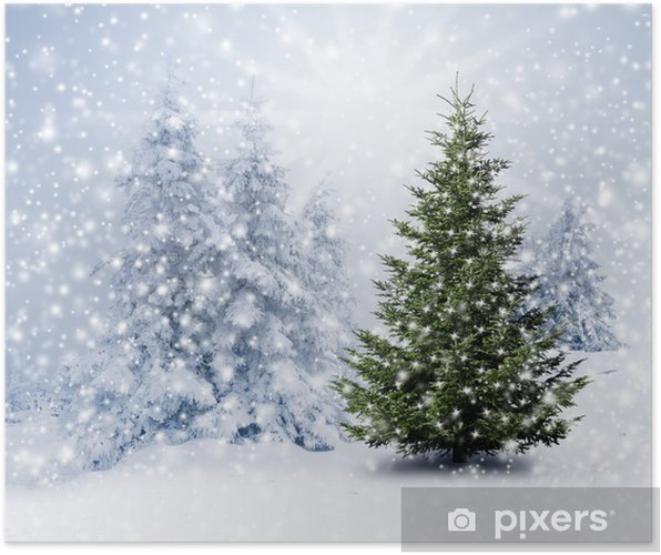 Tannenbaum Mit Schneefall.Poster Christbaum Im Schnee