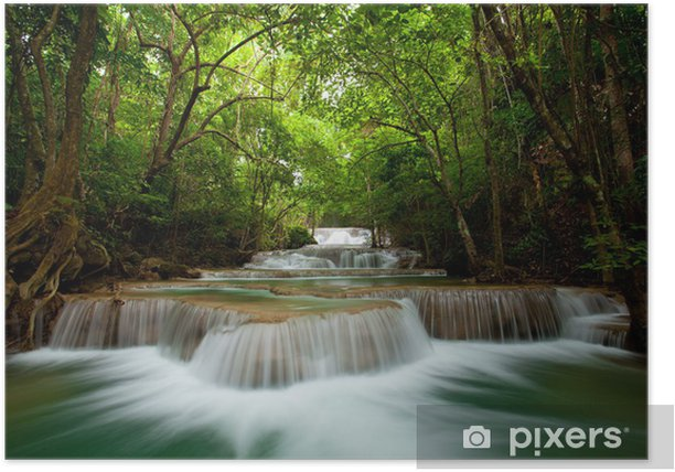 Poster Deep Forest Wasserfall - Themen