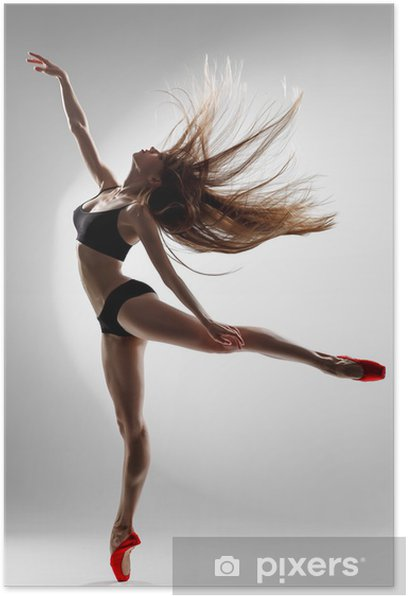 Poster Die Tänzerin - Themen