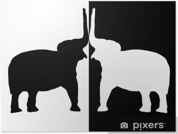 Poster Elefanten Schwarz Und Weiß