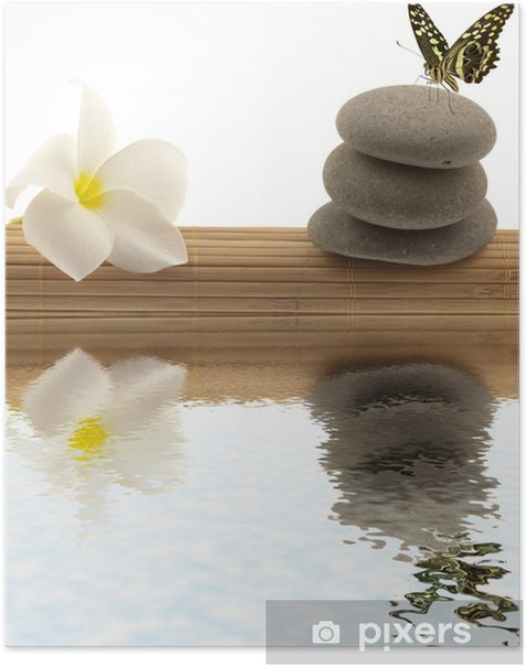 Poster Entspannung Konzept, Schmetterling, Frangipani, Kies - Blumen