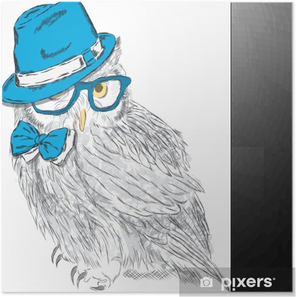 Poster Eule Mit Hut Und Sonnenbrille Eule Hipster Modestil