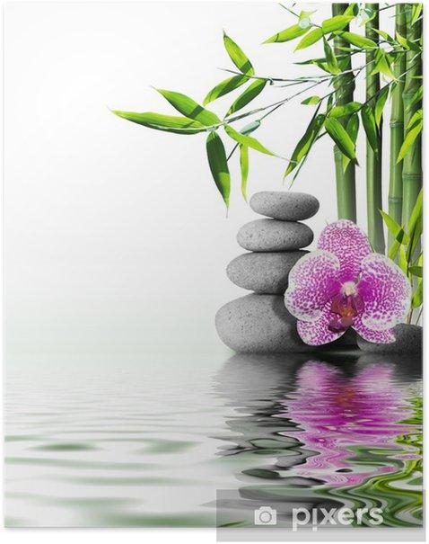 Poster Fiore di orchidea viola di bambù fine sull'acqua - Stili