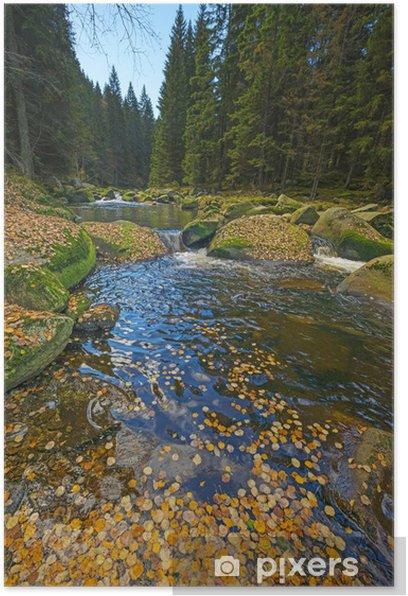 Poster Fluss mit gelben Herbstlaub - Themen