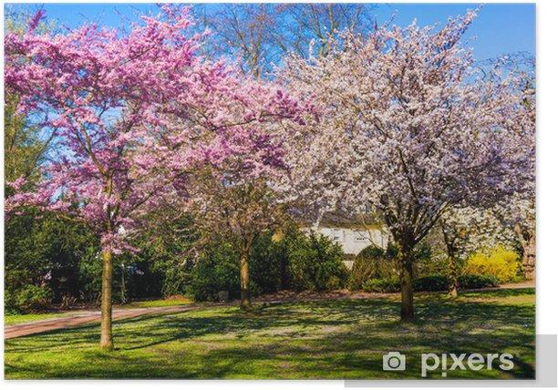 Poster Frühling Natur Hintergrund. Frühlingslandschaft - Jahreszeiten