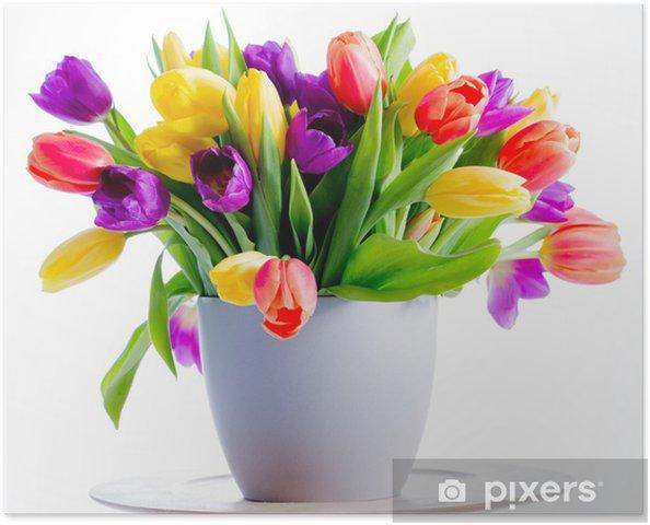poster fr hlingsblumen colorful frisch fr hling tulpen. Black Bedroom Furniture Sets. Home Design Ideas