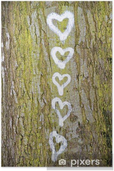 Poster Funf Herzen Auf Der Rinde Von Einem Baum Gemalt Pixers