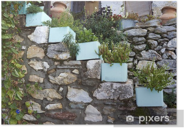 Poster Garten mit vergossen Kräuter, Oregano, Thymian, Minze - Pflanzen