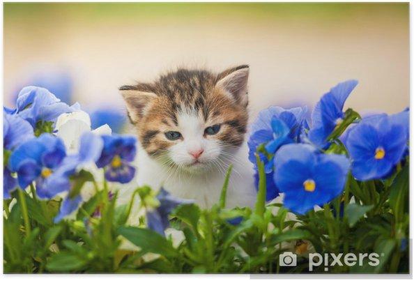 Poster Gattino adorabile nei fiori - Temi