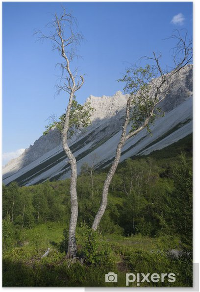 Poster Gebirgslandschaft Tirol - Berge