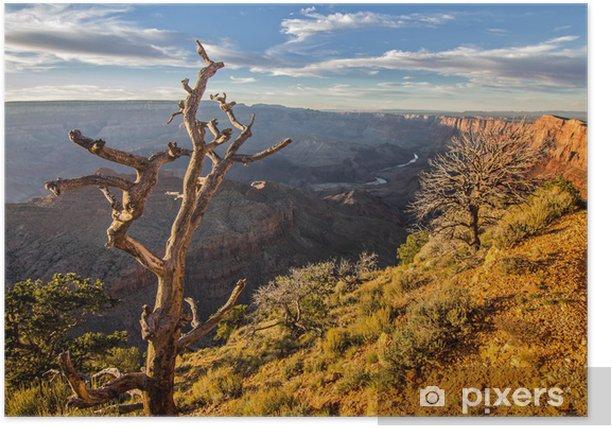 Poster Grand canyon - Amerika