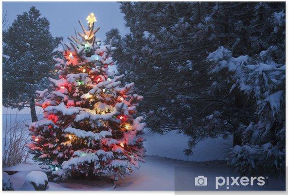 poster hell beleuchtet schnee bedeckte feiertags weihnachtsbaum winter storm pixers wir. Black Bedroom Furniture Sets. Home Design Ideas