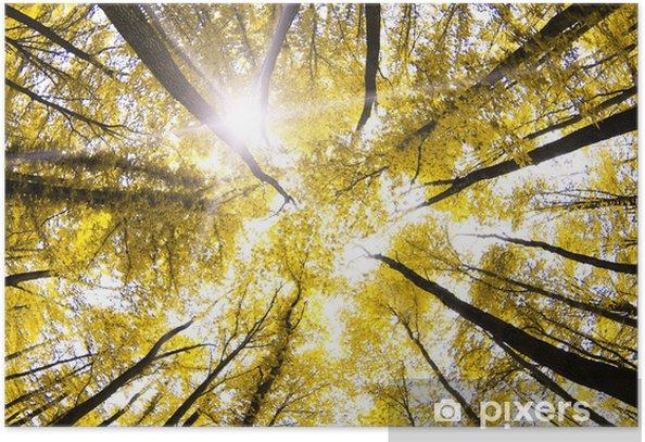Poster Herbst - Jahreszeiten