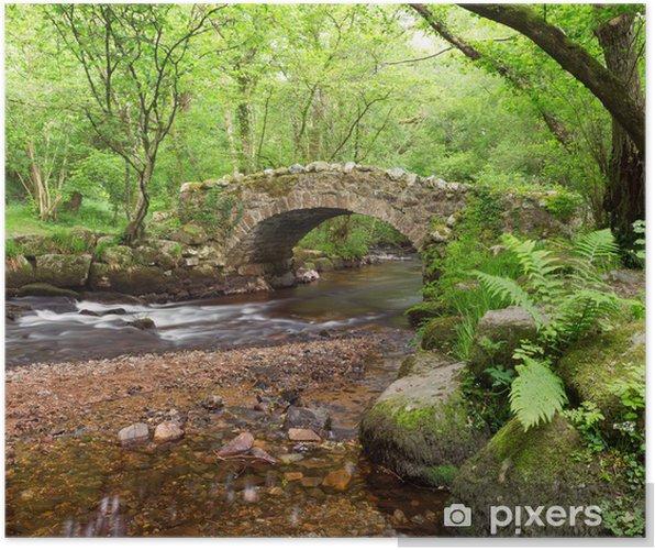 Poster Hisley Bridge, Hisley Holz, Dartmoor Devon Uk - Wasser