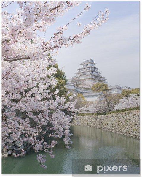 Poster I fiori di ciliegio e il castello in primavera, Giappone - Temi