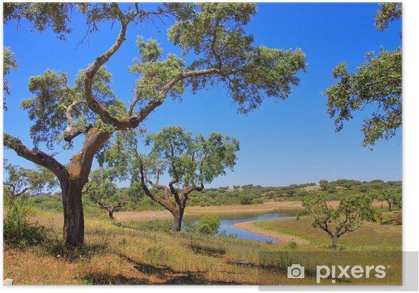 Poster Korkeiche - cork oak 58 - Europa