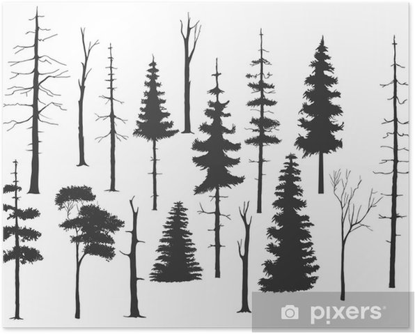Poster Kostenlos handdrawing Satz von dem Baum - Naturwunder
