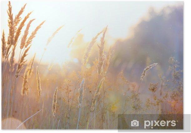 Poster Kunst Herbst sonnigen Natur Hintergrund - Jahreszeiten