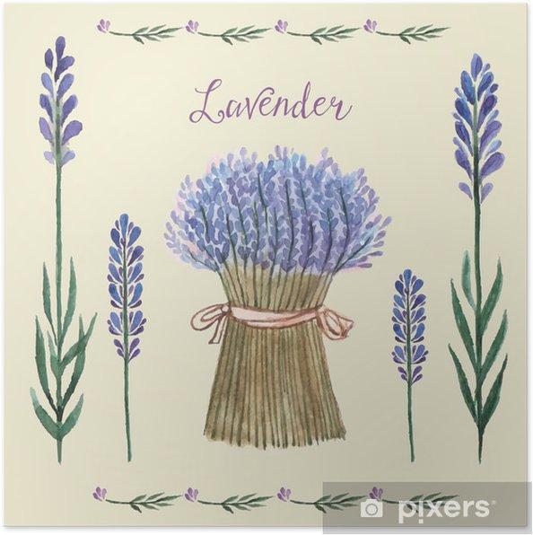 Poster Lavender Aquarell. - Pflanzen