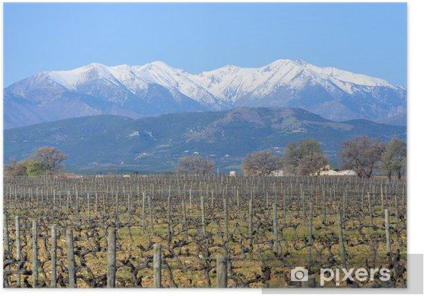 Poster Le Canigou dans les Pyrénées Orientales - Jahreszeiten