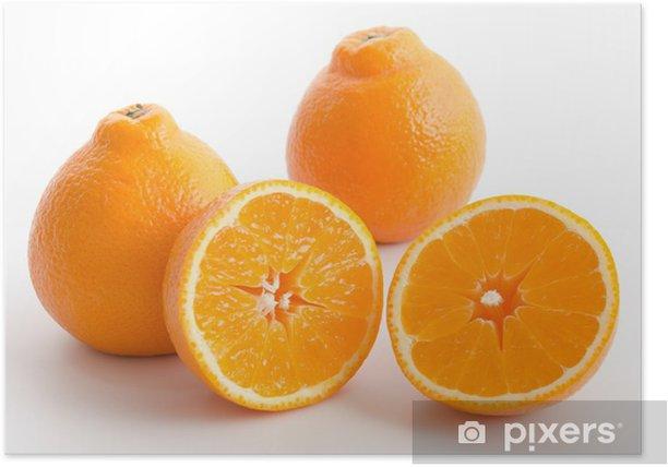 Poster Mineolas - Früchte