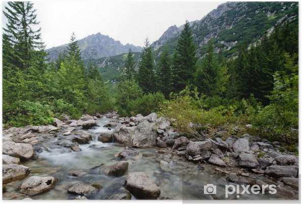 Poster Mountain stream - Europa