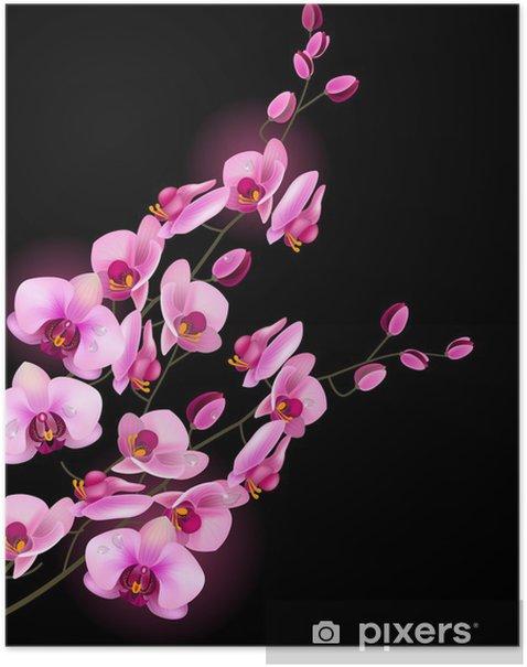 Poster Orchid rosa Blume auf schwarzem Hintergrund isoliert - iStaging 2