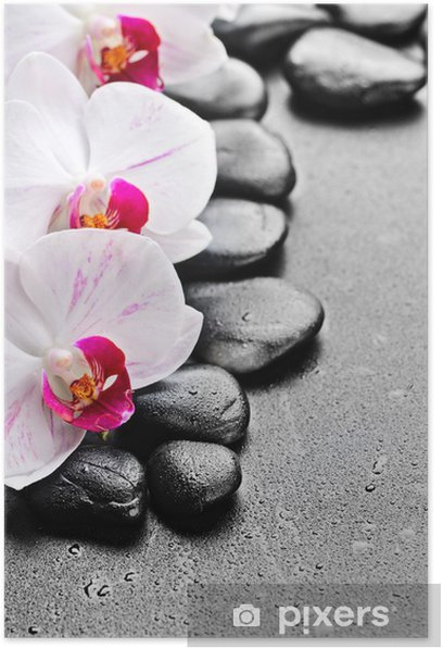 Poster Orchidee - Themen